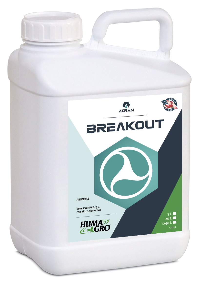 Producto BREAKOUT